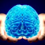 Когнитивная психология,что это такое?